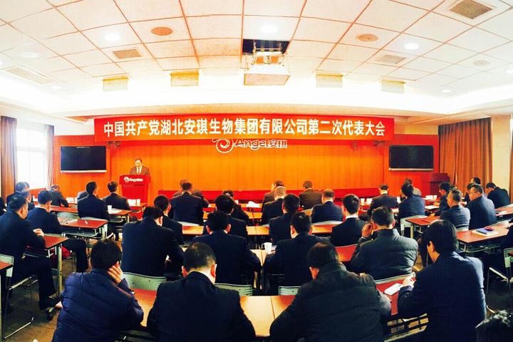 集团公司党委召开换届选举党员代表大会