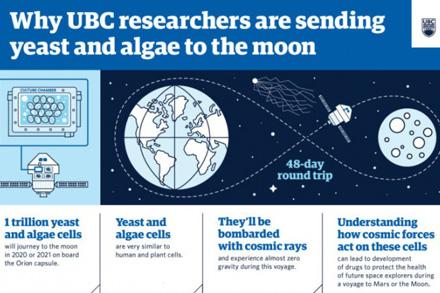 科学家将酵母暴露在模拟宇宙射线下 以获得保护宇航员免受辐射的方法
