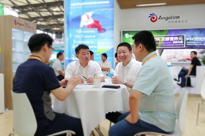安琪闪亮CphI China 2019,加速拓展生物医药市场