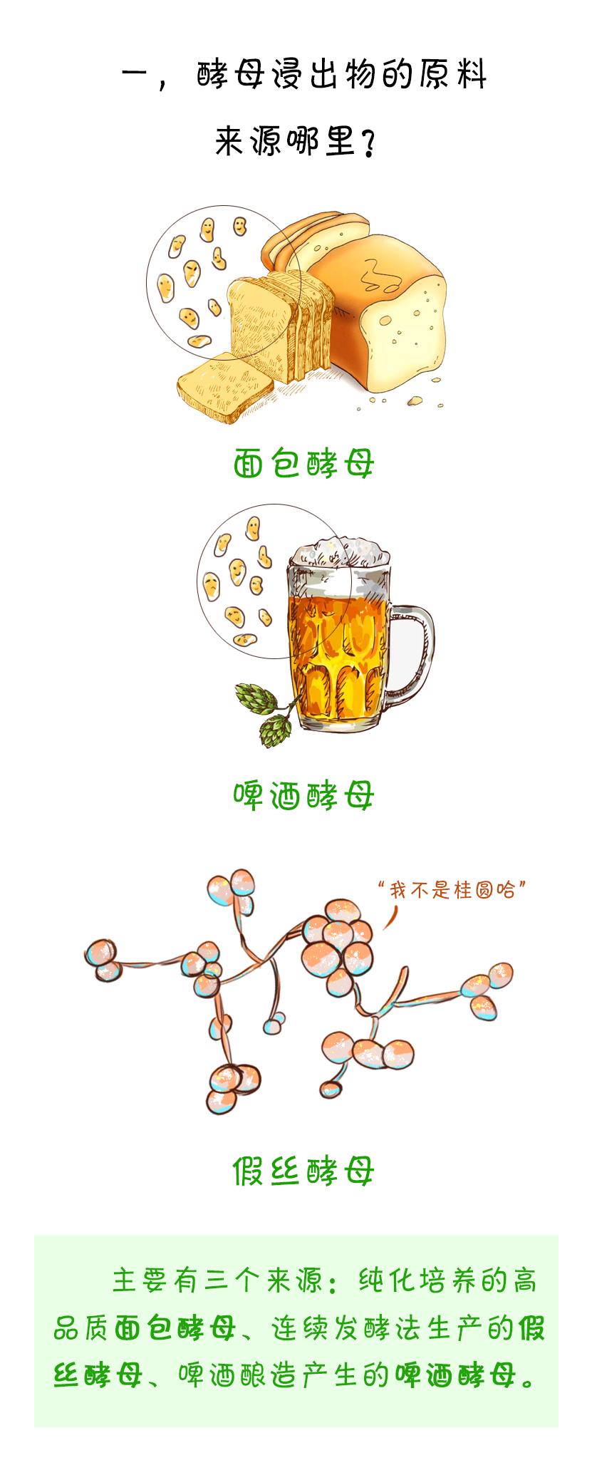 面包酵母浸出物和啤酒酵母浸出物的区别在哪里?1.jpg