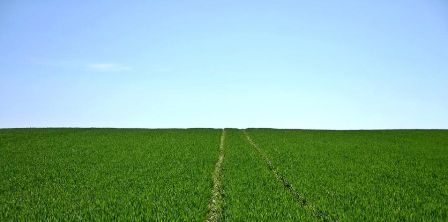 """智造   升级植物有机氮源,解决""""卡脖子""""难题"""
